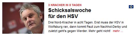 HSV Schicksalswoche 2011